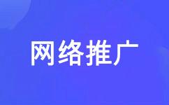 网络推广 网络营销 网站推广公司